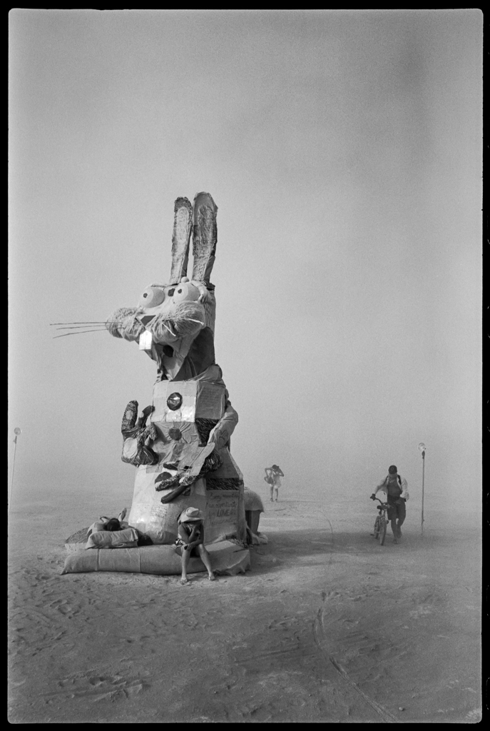 burning_man_bunny_4800_edit_bfsharp_20130501_web